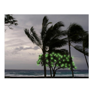 Holiday Lights on Palm Trees Postcards
