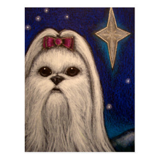 HOLIDAY MALTESE DOG - BELEN STAR 1 POSTCARD
