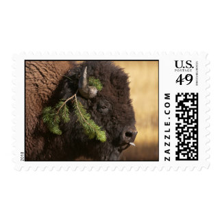 Holiday Mischief Postage Stamps