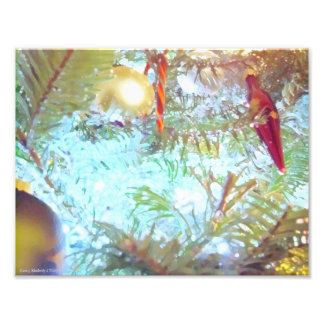 Holiday Ornaments in the Light Photo Print