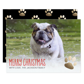Holiday Photo Card | Gold Paw Dog