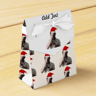 Holiday Photographer Party Favor Boxes