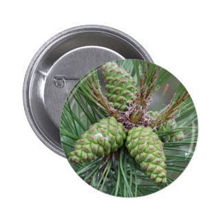 Holiday Pine Cones Button