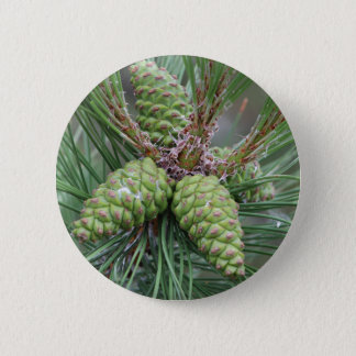Holiday Pine Cones Pinback Button