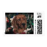 Holiday Redbone Coonhound Stamps