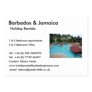 Holiday Rentals Large Business Cards (Pack Of 100)