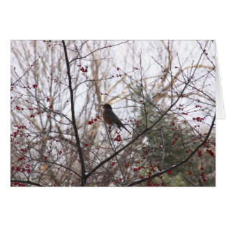 Holiday Scene Robin in tree Greeting Card