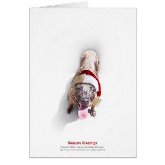Holiday Shelter Dog 2 Greeting Card