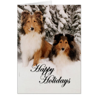 Holiday Shelties Greeting Card