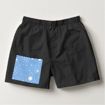 Holiday Snowflakes on Blue Boxers