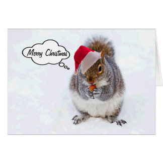 Holiday Squirrel Card