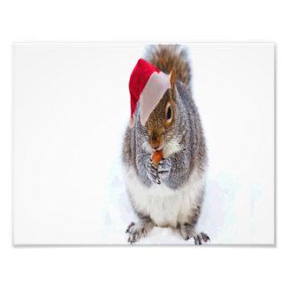 Holiday Squirrel Photo Print