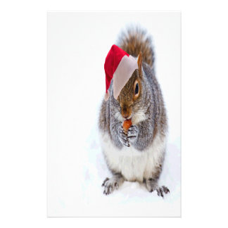 Holiday Squirrel Stationery