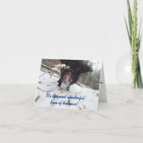 Holiday Wishes, Pig Christmas Card