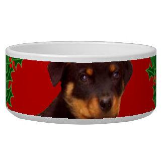 Holidays Rottweiler puppy dog bowl
