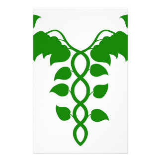 Holistic Medicine Caduceus or DNA concept Stationery