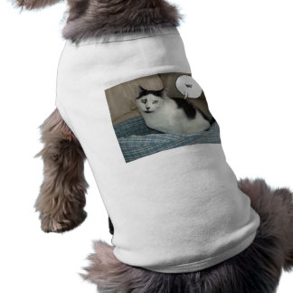 Holla! T-Shirt