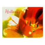 Holland, Impressionist Spring Tulips Postcard