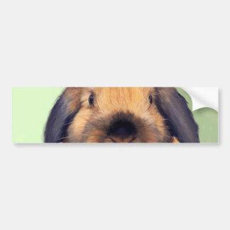 Holland Lop Bumper Sticker