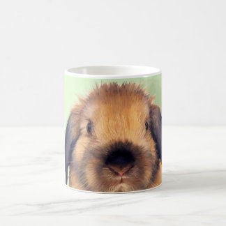 Holland Lop Coffee Mug