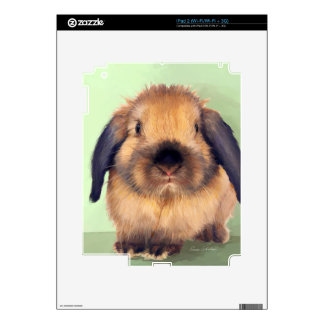 Holland Lop Decal For The iPad 2