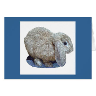 Holland Lop Ear Rabbit Greeting and Note Cards
