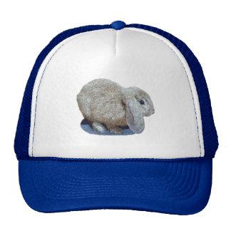 Holland Lop Ear Rabbit Hat