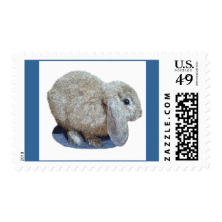 Holland Lop Ear Rabbit Postage Stamps
