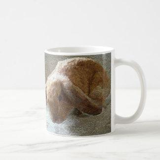 Holland Lop Eared Rabbit Mugs