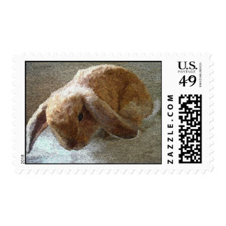 Holland Lop Eared Rabbit Postage Stamps