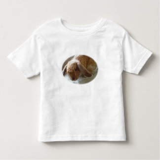 Holland Lop Eared Rabbit Shirts