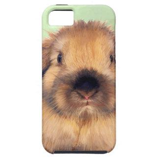 Holland Lop iPhone SE/5/5s Case