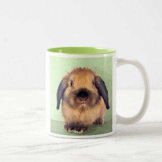 Holland Lop Two-Tone Coffee Mug