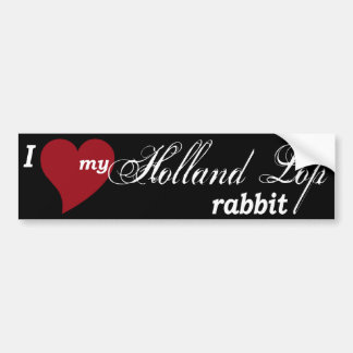 Holland Lop rabbit Car Bumper Sticker