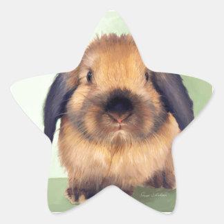 Holland Lop Star Sticker