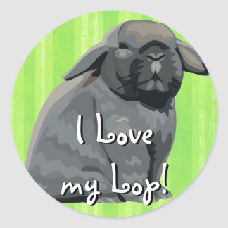 Holland Lop Stickers