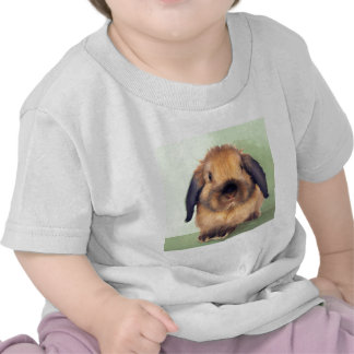 Holland Lop Tshirts