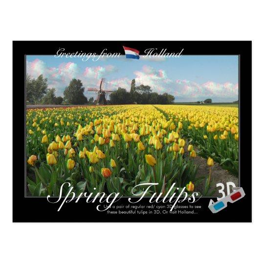Holland Spring Tulips Landscape 3D Anaglyph Postcard