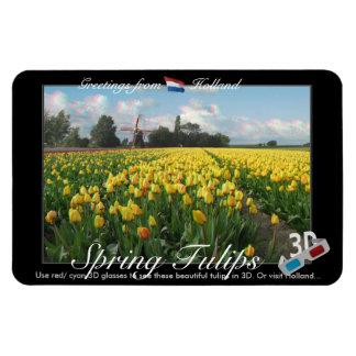 Holland Tulips Landscape 3D View Anaglyph Rectangle Magnets