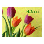 Holland, Vintage Impressionist Tulips Postcard