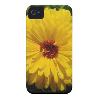Holligold Blossoming Yellow Pot Marigold Flower iPhone 4 Case-Mate Cases