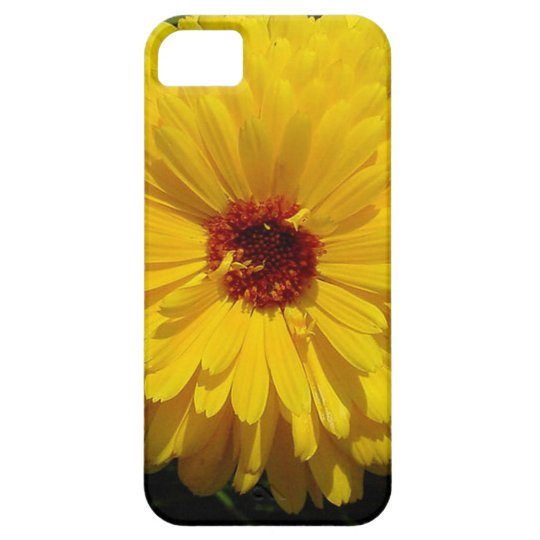 Holligold Blossoming Yellow Pot Marigold Flower iPhone SE/5/5s Case