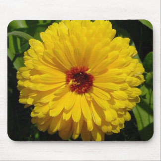 Holligold Blossoming Yellow Pot Marigold Flower Mouse Pad