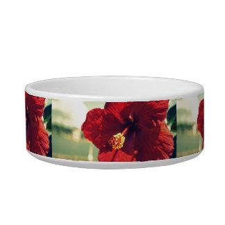 Hollis Hibiscus Bowl