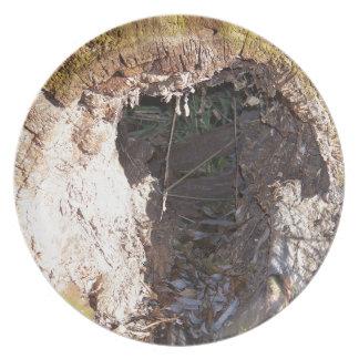 Hollow Log Melamine Plate