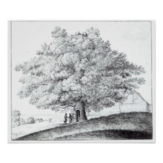 Hollow Tree at Hampstead, 1663 Poster