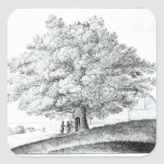 Hollow Tree at Hampstead, 1663 Square Sticker