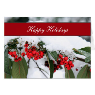 holly berries in snow  Corporate holiday Cards