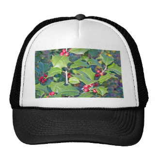 Holly Berries nature Trucker Hat