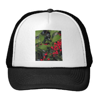 Holly Berries - Photograph Hat